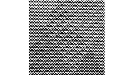 Bridget Riley, Tremor, 1962. © 2012 Bridget Riley. Courtesy Karsten Schubert, London