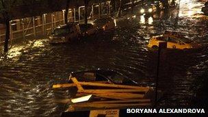 The FDR Drive under water. Photo: Boryana Alexandrova