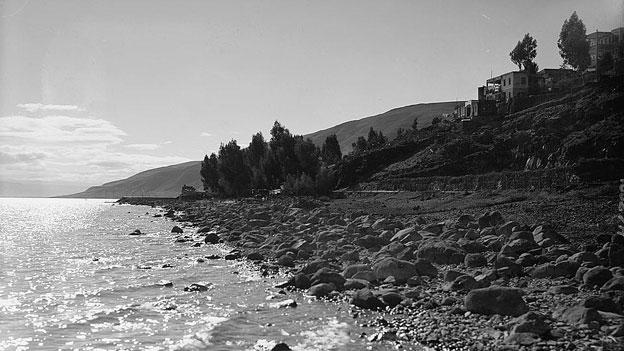 Shore of Sea of Galilee