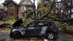 Burned-out car with fallen tree, Toronto (30 Oct)
