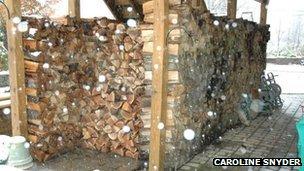 Caroline Snyder's woodpile