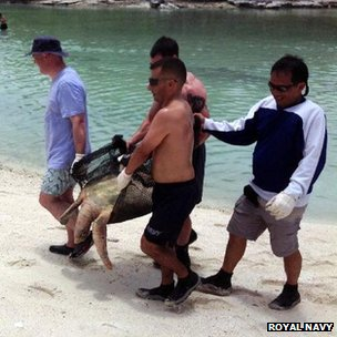 Sailors carrying turtle