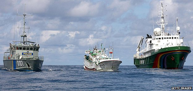 Palau police boat and Greenpeace vessel escort a fishing vessel suspected of shark finning
