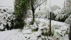 Snowfall in the Mendips, Somerset, 4 November 2012. Photo: Stephen Cole