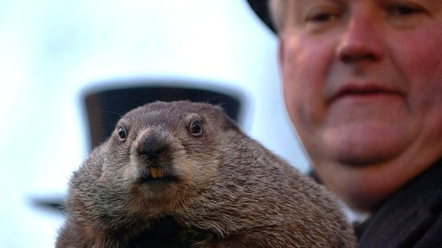 Official Groundhog Handler Bill Deeley holds Punxsutawney Phil