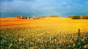 Wisconsin landscape 5 November 2012