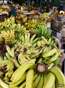 Bananas at a market on the French Caribbean island of La Martinique