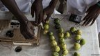 Nigerian teenagers use lime juice to generate electricity