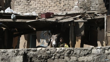 A boy with his donkey in a Cairo slum