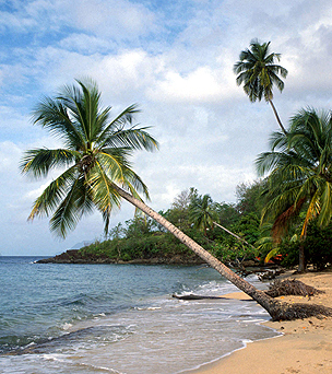 Beach in Vieux Bourg, Guadeloupe