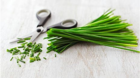 Chives with scissors