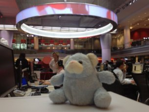 A bear is loose in the BBC newsroom