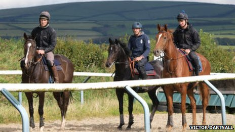 Horses at Victor Dartnall's training stables