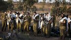 Israeli soldiers conduct morning prayers near the border with Gaza 18/11/2012