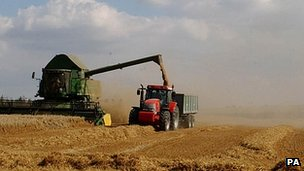 Oat harvest near Cambridge, England - file pic