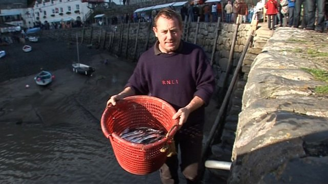 Stephen Perham, herring fisherman