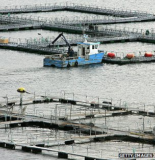 Fish farm on Faroe Islands