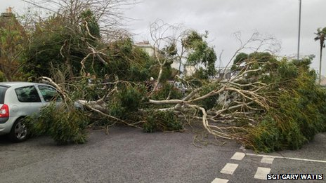Fallen tree in Falmouth. Pic: Sgt Gary Watts