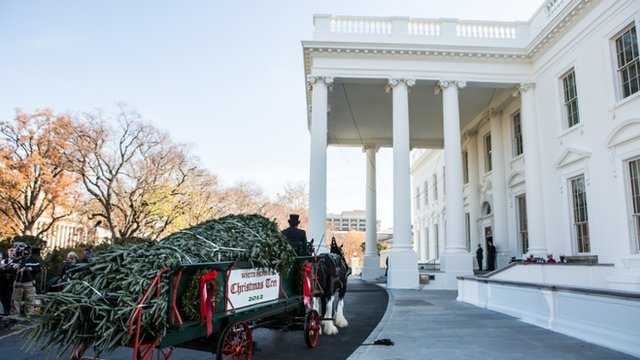 Christmas tree arrives at White Hosue