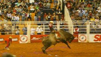 The Barretos rodeo