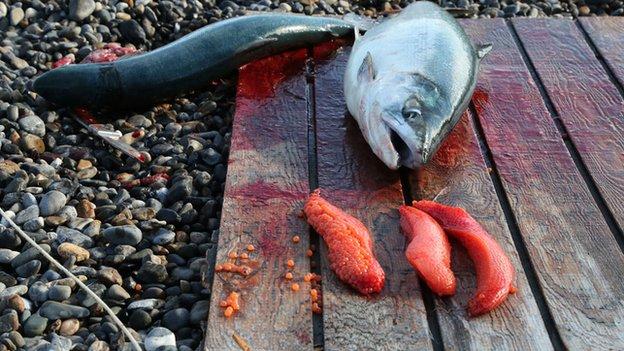 Fish and its guts