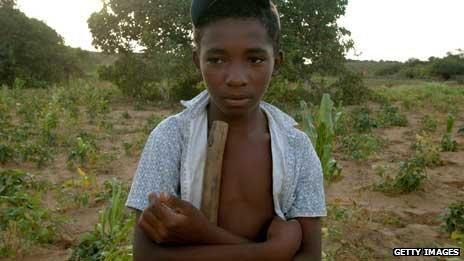 A young boy on his family's farm in Acaua, in Piaul western Brazil