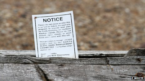 Notice to deter disturbance of nests on Cooper Island