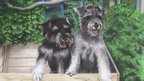 An airbrush painting of some puppies