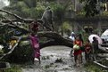 Residents saw an uprooted tree to clear the road after Typhoon Bopha hit Tagum City, southern Philippines December 4, 2012. Typhoon Bopha made landfall in southern Philippines early Tuesday, bringing heavy rains and strong winds, forcing 41,600 people living in coastal areas to flee their homes