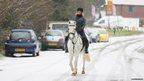 Horse and rider in the snow in West Sussex