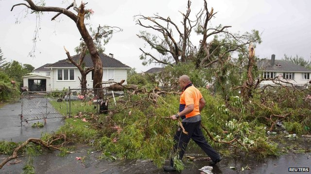 Man walks past destroyed trees