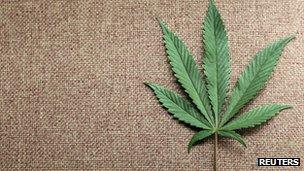 A marijuana leaf is displayed at Canna Pi medical marijuana dispensary in Seattle, Washington, 27 November 2012