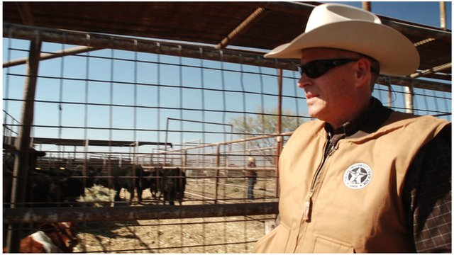 A Texas ranger checking cattle