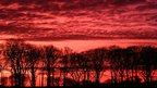 A pink red cloudy sky fills the photograph. A line of silhouetted trees sit on the horizon.