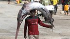A fisherman carries a swordfish on his head 
