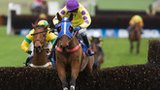 Le Beau Bai on the way to winning the 2011 Coral Welsh National