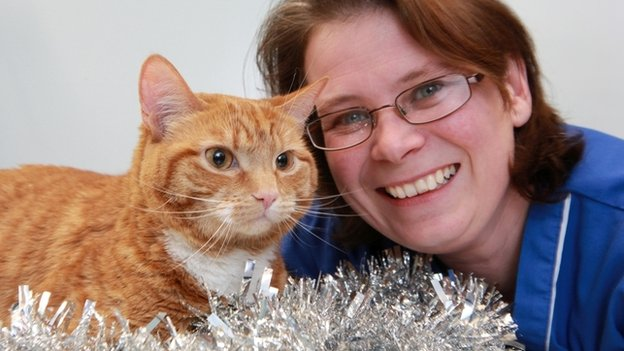 Ginge the cat with a PDSA nurse