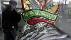 Christmas decoration in a fish shop in Haifa (photo credit: Ariel Jerozolimski)