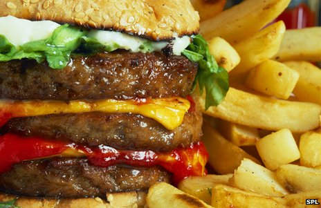 Huge cheeseburger and fries