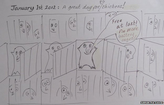 Samantha David's take on the banning of battery cages