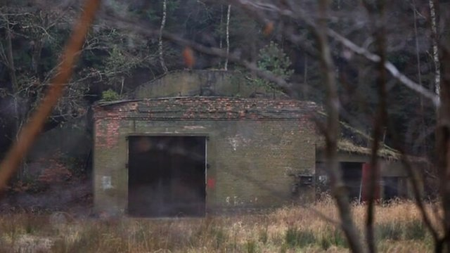 Old building in woods