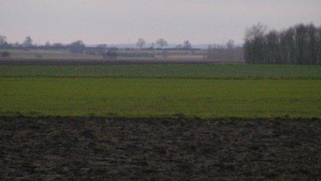 Lincolnshrie field
