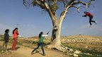 A Bedouin girl swings from a tree as she plays with other in the Jordan Valley, near West Bank city of Jenin, 2 January