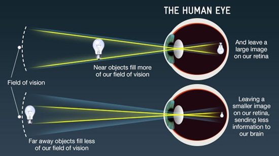 Diagram showing how the human eye works