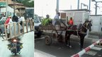 L: A passenger on a motorbike carrying a ladder in Dakar, Senegal. R: A horse and cart lining up at a toll road barrier in Dakar, Senegal (Photo: BBC News website reader Jennifer Harte)