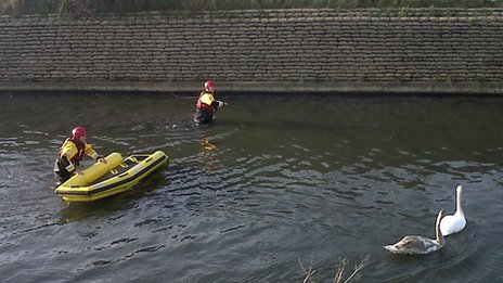 Rescuers move towards the swans