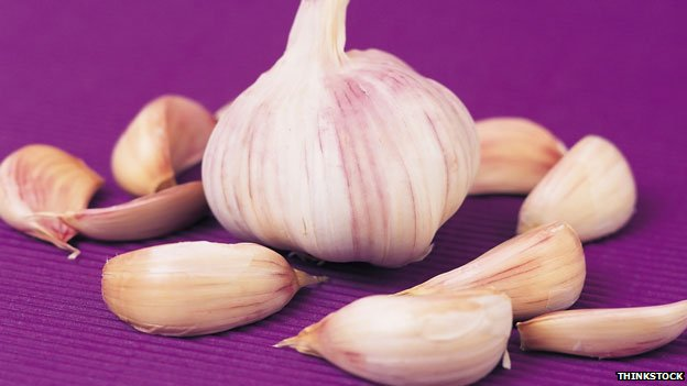 Garlic