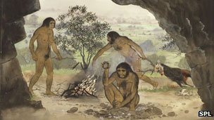 Artwork of Homo erectus