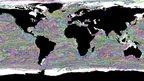 Found in NEMO: sea turtle ocean highways: Rebecca Scott, Biological Science