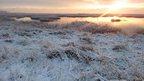Snowy scene in Kent